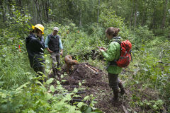 Alaska Wilderness Trail Construction. Alaska Department of Fish and Game Refuge Manager Doug Hill oversees volunteers during Alaska Wetlands Wilderness Trail Royalty Free Stock Images