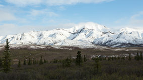 Alaska& x27; parque nacional de s Denali Fotos de Stock Royalty Free