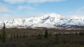 Alaska& x27; s Denali Nationaal Park Royalty-vrije Stock Foto's