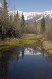 Alaskabo berg och lugnat damm Arkivfoton