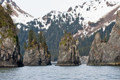 alaskabo fjord Royaltyfri Foto