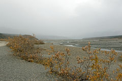 alaskabo flod Royaltyfria Foton