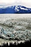 Alaskabo glaciärer Arkivbild