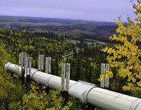 Alaskabo olje- rörledning arkivfoto