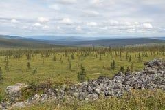 Alaskabon landskap Arkivfoto