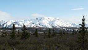 Alaskabon landskap Arkivfoton