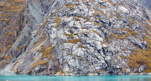 Alaskan Autumn Colors Royalty Free Stock Photo