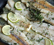 Alaskan cod in butter with rosemary Stock Photos