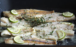 Alaskan cod in butter with rosemary Royalty Free Stock Images