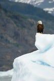 Alaskan cruise stock image
