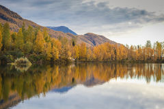 Alaskan Fall. The reflection of an Alaskan fall on one of the states many lakes Stock Images