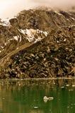 Alaskan Glacier with iceberg Royalty Free Stock Image