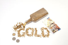 Alaskan Gold and shekels Royalty Free Stock Photos