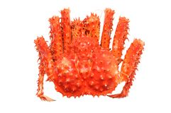 Alaskan king crab Stock Photo