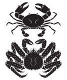 Alaskan king crab silhouette. Vector Illustrations. Royalty Free Stock Photo