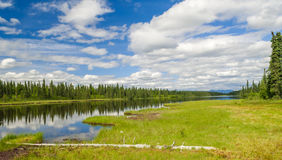 Alaskan landsape. Trees reflectin in river on a summer alaskan day Stock Images