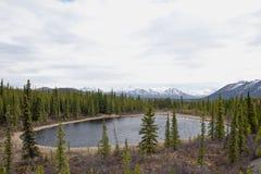 Alaskan landscape Stock Photos