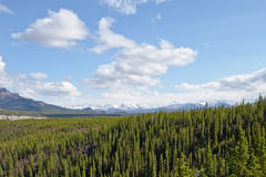 Alaskan landscape Stock Photography