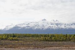 Alaskan landscape Royalty Free Stock Photos