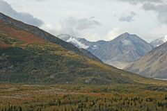 Alaskan Landscape. Extreme landscape in Alaska wilderness stock photos