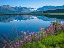 Tanana Valley Alaska Stock Photos