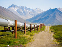 Alaskan Landscape. Beautiful Alaskan landscape with Alyeska pipeline Stock Images