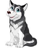 Alaskan Malamute. Cartoon illustration of Alaskan Malamute dog Stock Photo