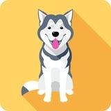 Alaskan Malamute dog icon flat design Royalty Free Stock Images