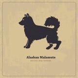 Alaskan Malamute  dog silhouette Royalty Free Stock Image