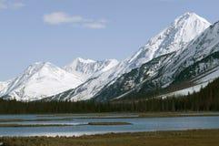 Alaskan Mountain Range. The Alaskan Mountain Range towering over a lake Royalty Free Stock Photo