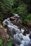 Alaskan Mountain stream. This fast running mountain stream cascaded down the side of the mountain in the thick temperate rain forest Stock Image