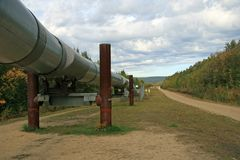 Alaskan Pipeline. Outside Fairbanks, Alaska royalty free stock images