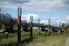 The alaskan pipeline. A closeup of the famous oil pipeline near a state park in alaska royalty free stock images