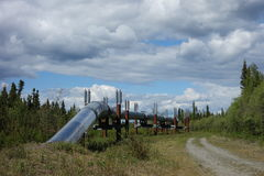 The alaskan pipeline. The oil pipeline emerging from the ground to run aboveground in alaska royalty free stock photography
