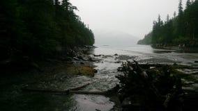 Alaskan Stream royalty free stock photography