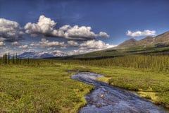 Alaskan Summer Stock Photo