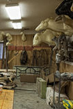 Alaskan Taxidermy shop Stock Image