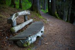 Alaskan Trail Bench Stock Photo