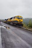 Alaskan train. Vertical image of an Alaskan train entering the train station Stock Image