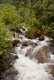 Alaskan Waterfall. Vertical image of an Alaskan waterfall in the rain forest Royalty Free Stock Photography