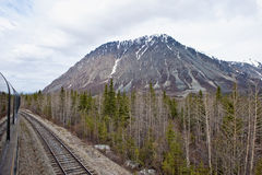 Alaskan Wilderness Stock Images