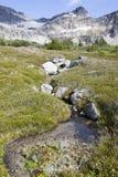 Alaski Mały strumień Obrazy Stock