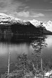 Alaski wybrzeże Obraz Royalty Free