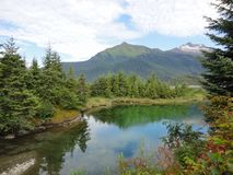 Alaskian Mountain in background of lake on the edge of a temperate rainforest. Beautiful landscape with reflection off the still water of the lake royalty free stock image