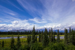 Alaskische Fluss-Landschaft Stockfoto