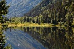 Alaskische Landschaft Stockfotografie
