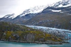 Alaskische Landschaft mit Schnee mit einer Kappe bedeckten Bergen stockfotografie