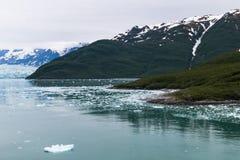 Alaskische Landschaft von Gletscher 1 Lizenzfreies Stockbild