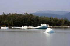 Alaskischer Eis-Fluss stockbilder
