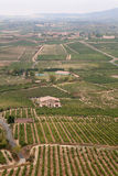 Alavesa Vineyards, La Rioja, Northern Spain Stock Photos